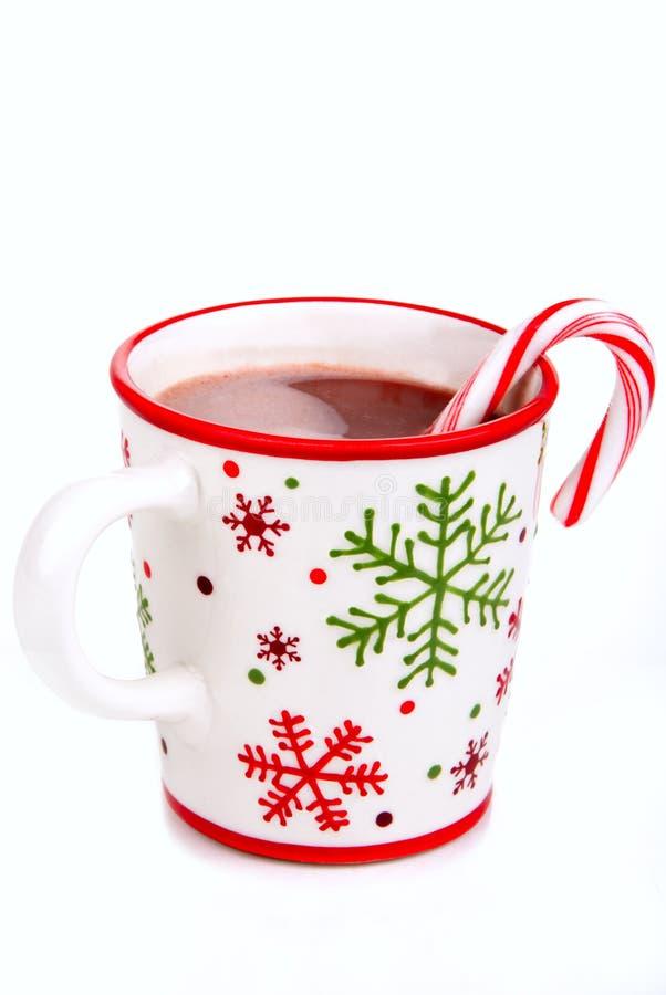 饮料热圣诞节的可可粉 库存图片