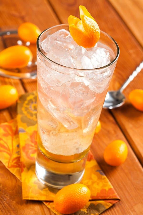 饮料用兰姆酒和伏特加酒 免版税库存图片