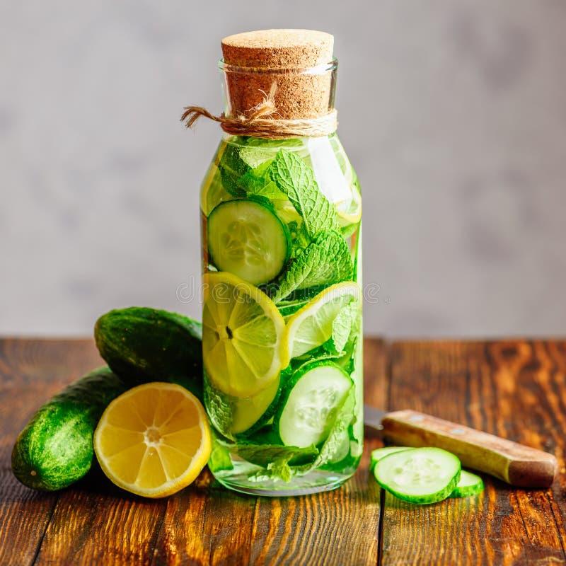 饮料用柠檬、黄瓜和薄菏 免版税库存照片