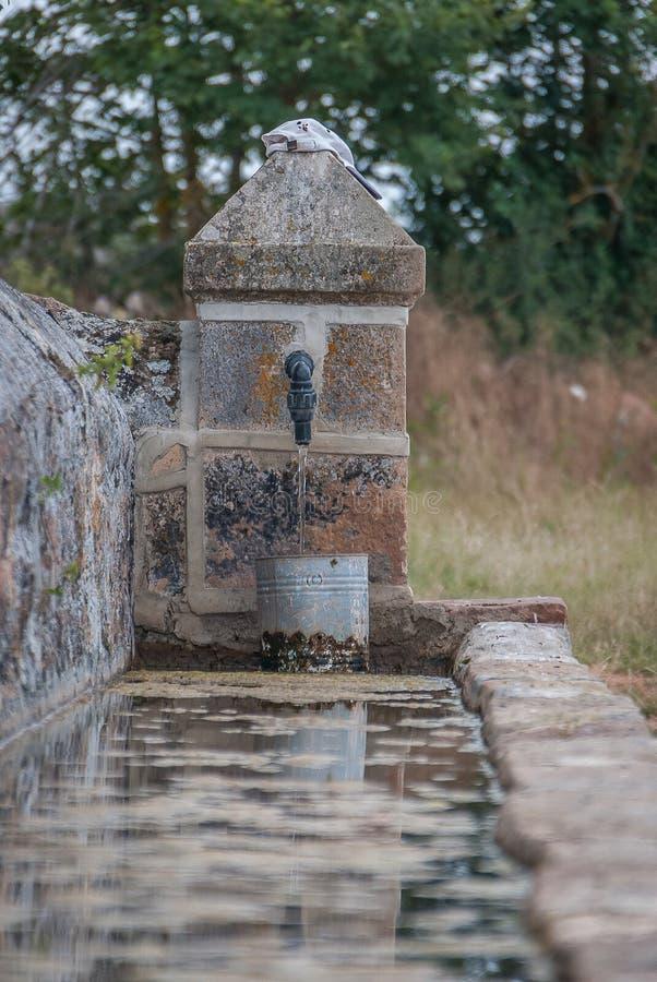 饮水器或典型的pilon在丰特斯Carrionas国立公园  帕伦西亚 库存照片