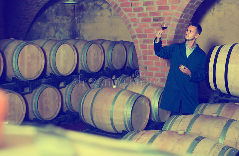 饮用正面男性的酿酒商杯酒 免版税库存图片