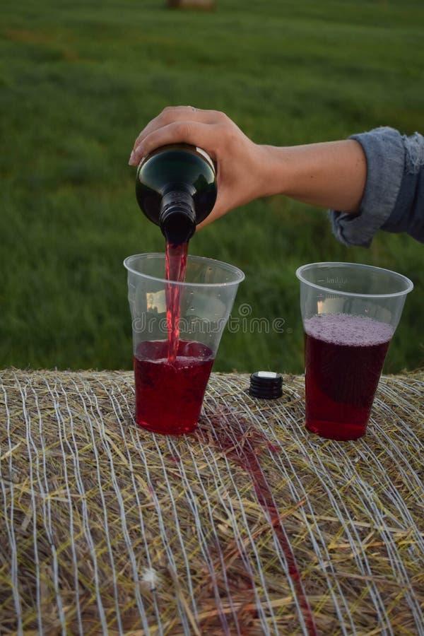 饮用的玻璃酒 库存图片