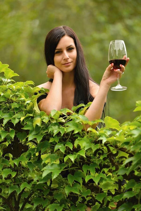 饮用的酒妇女 库存照片