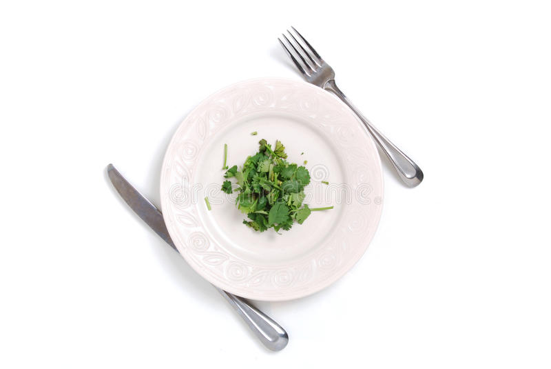 饮食膳食 免版税图库摄影