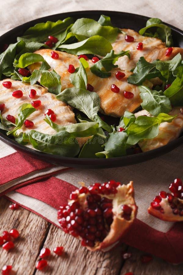 饮食食物:与芝麻菜和石榴特写镜头的鸡 ver 免版税图库摄影