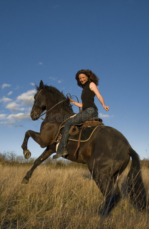 饲养公马的女孩 库存图片
