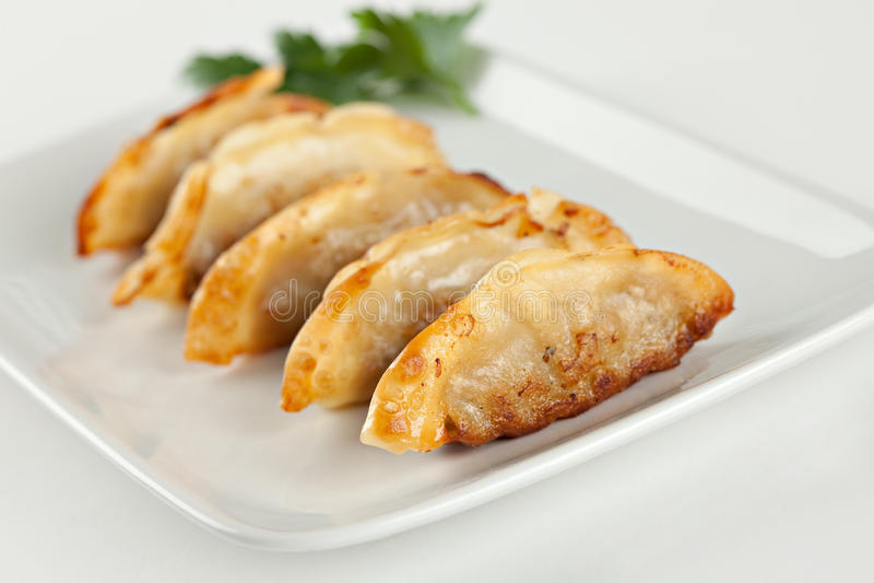 饺子油煎了罐头食品滞销货 免版税图库摄影