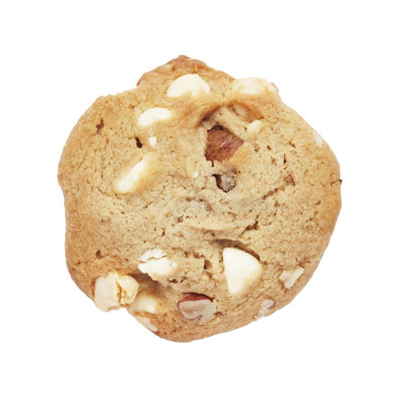 饼干巧克力曲奇饼胡说的白色 库存照片