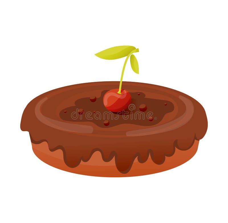 饼,报道用结冰用樱桃和巧克力 皇族释放例证