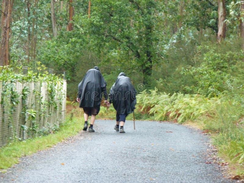 香客圣詹姆斯 走在Camino de圣地亚哥的人们 免版税库存图片