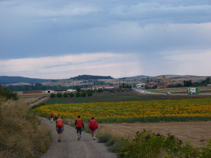 香客圣詹姆斯 走在Camino de圣地亚哥的人 免版税图库摄影
