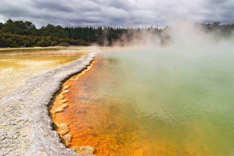 香宾水池在Waiotapu,新西兰 库存照片