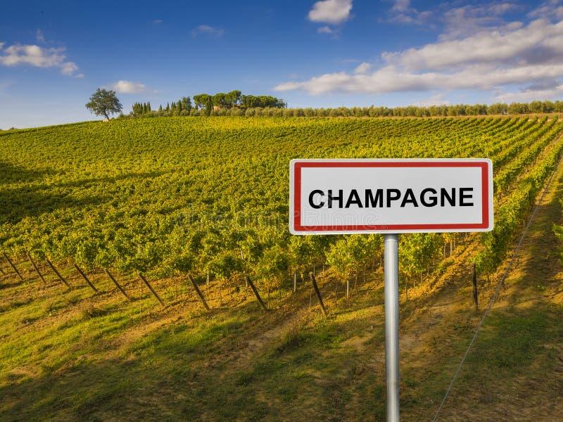 香宾法国的酒区域 库存照片