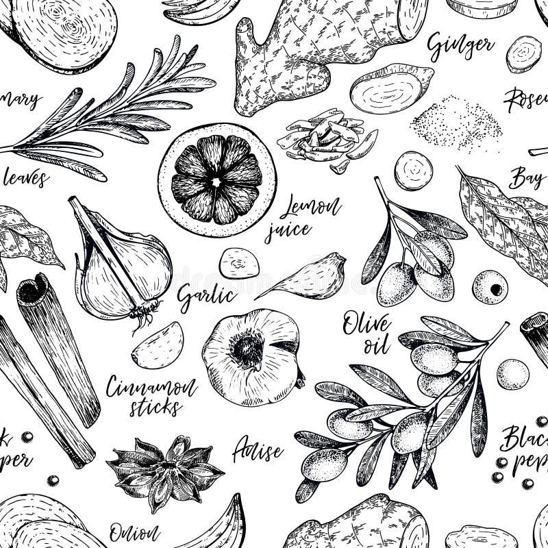 香料、草本和调味品的手拉的无缝的样式 被刻记的传染媒介 葱,月桂叶,橄榄油,姜,大蒜 库存例证