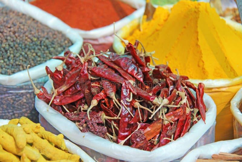 香料印度 香料在市场上被卖在印度 红辣椒,桂香, baden,姜黄、茴香,豆蔻果实和其他 库存照片