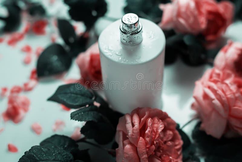 香料厂,化妆用品,芬芳汇集 免版税图库摄影
