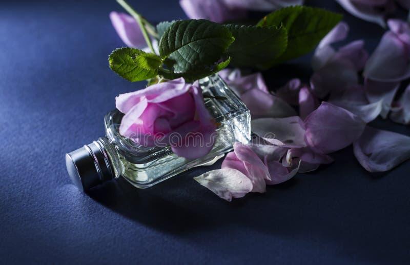 香料厂 免版税图库摄影