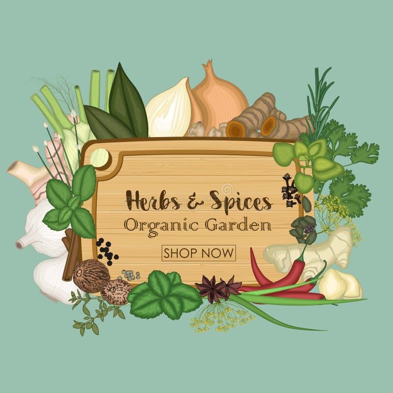 香料和草本的汇集与板条木盘子 向量例证