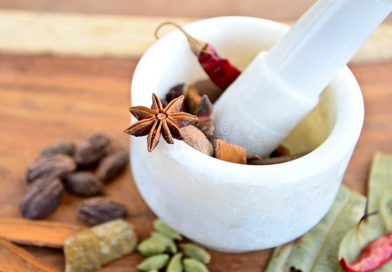 香料在灰浆杵的印地安人 库存照片