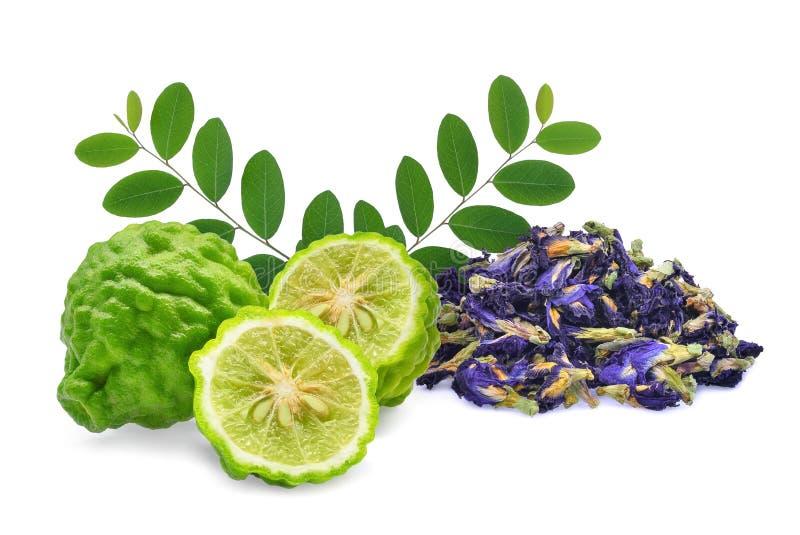 香柠檬和干蝴蝶豌豆、蓝色豌豆、在白色背景或者aparajita花隔绝的clitoria ternatea 库存图片