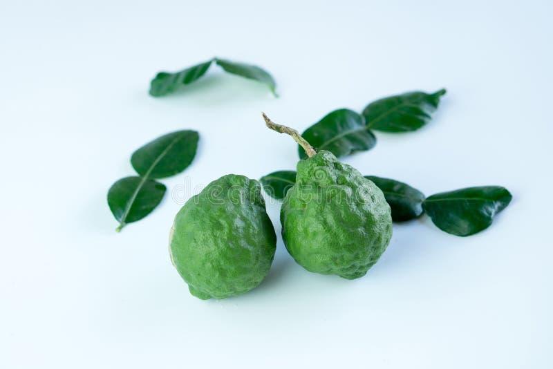 香柠檬是一个热带草本 免版税库存照片
