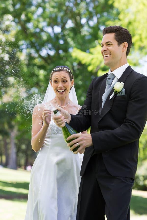香槟新婚佳偶夫妇流行的黄柏  库存图片