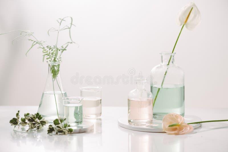 香水油概念 实验室玻璃器皿用在桌上的被灌输的花卉水 图库摄影