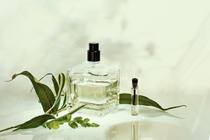 香水瓶和取样器与植物绿色自然本底的 选择聚焦 香料厂汇集,化妆用品 免版税图库摄影