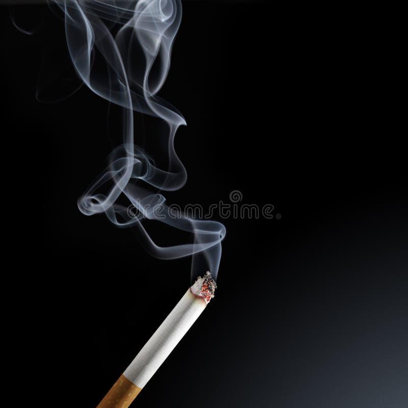 香烟烟 库存图片
