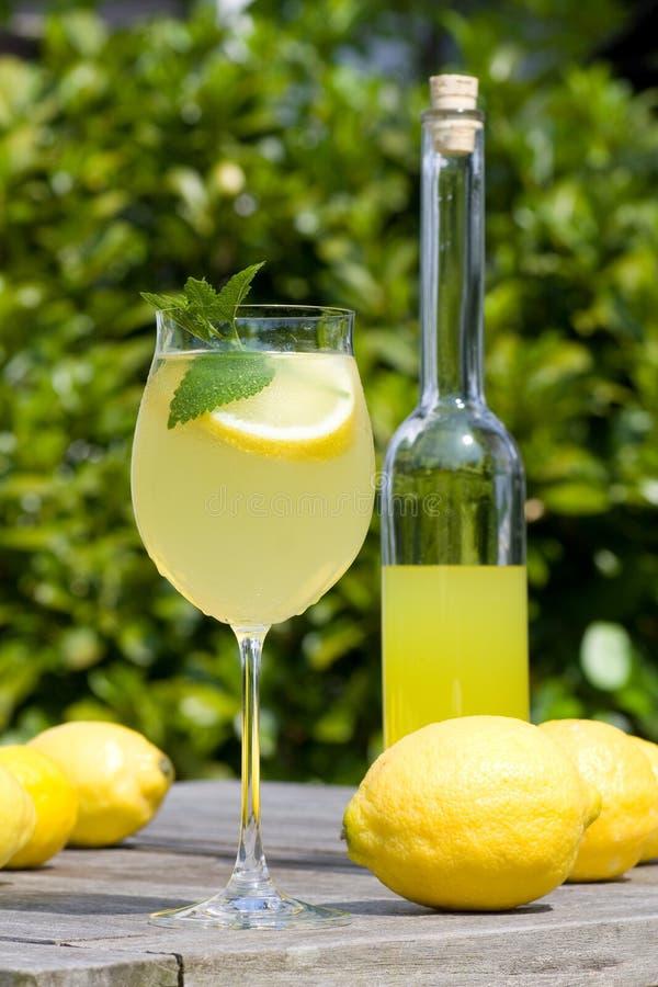香脂鸡尾酒柠檬片式 免版税图库摄影