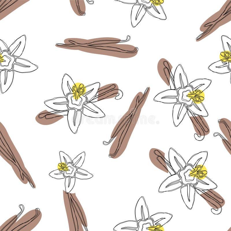 香草棍子和花导航手拉的无缝的样式 味道香草开花例证 皇族释放例证