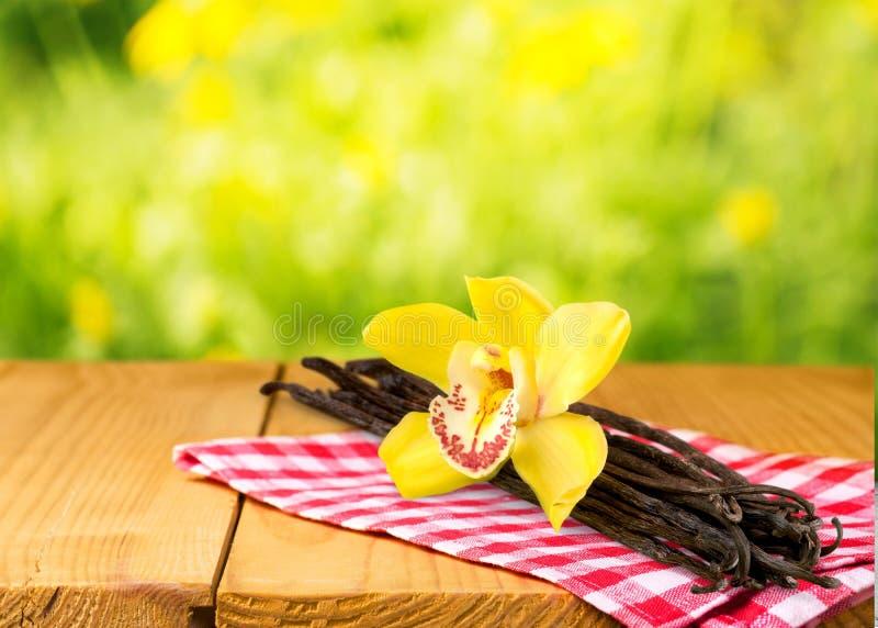 香草荚和花在木背景 免版税图库摄影