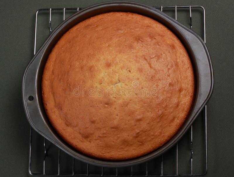 香草蛋糕 免版税库存图片
