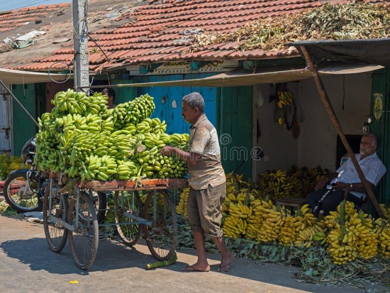 香蕉在印地安市场 免版税库存图片