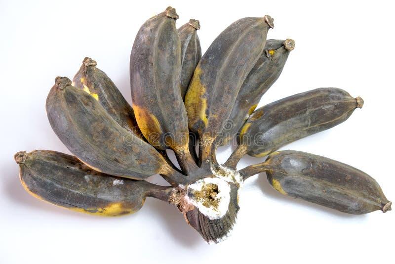 香蕉是非常成熟的 免版税图库摄影