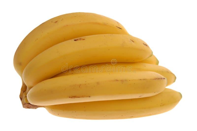 香蕉束 免版税库存图片