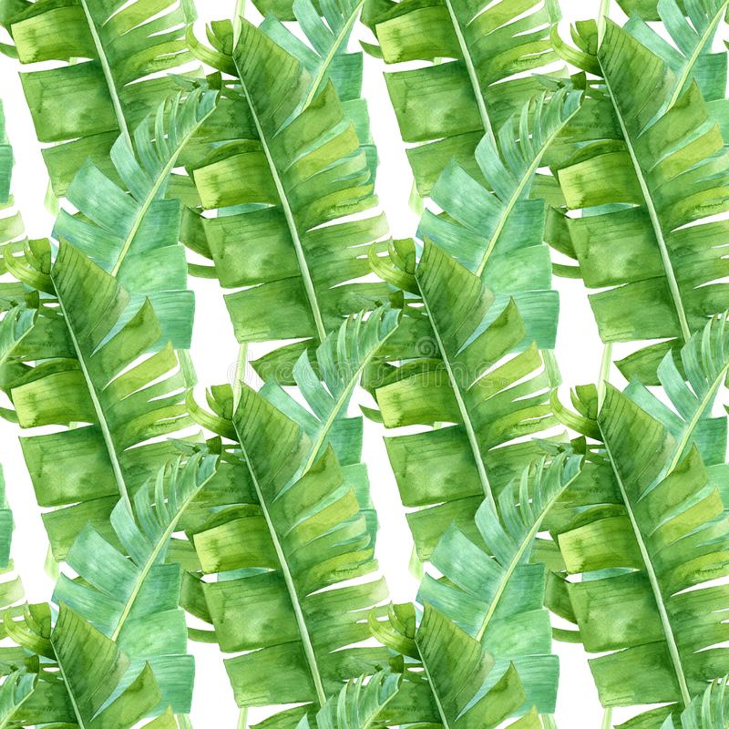 香蕉棕榈叶无缝的样式 免版税库存图片