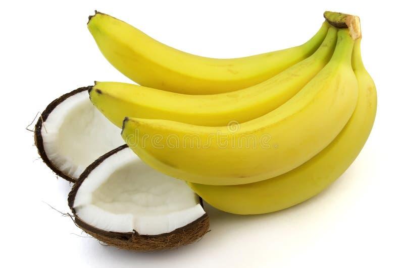香蕉椰树 免版税库存图片