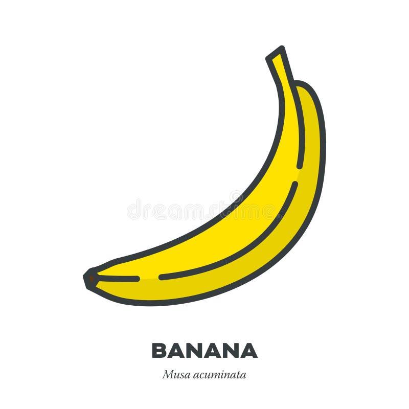 香蕉象,填装了概述样式传染媒介 皇族释放例证