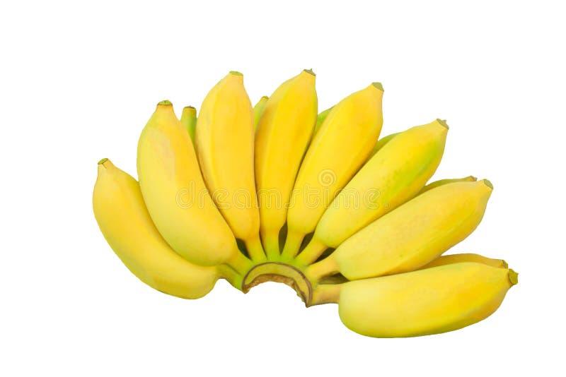 香蕉黄色果子自然 免版税库存照片