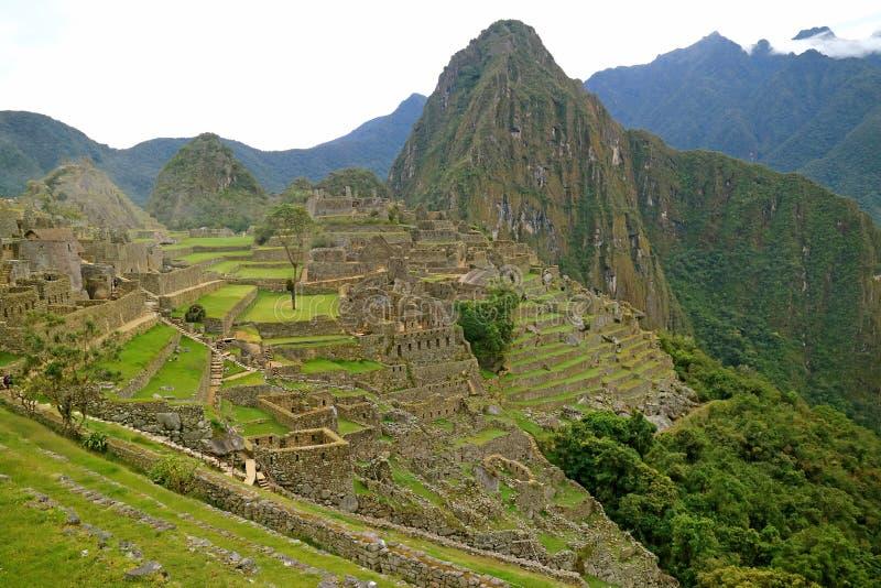 马丘比丘在清早,著名印加人废墟在库斯科地区,乌鲁班巴省,秘鲁 免版税图库摄影