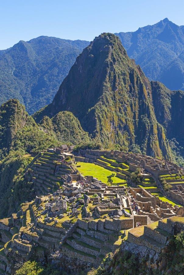 马丘比丘垂直的风景在库斯科,秘鲁附近的 免版税库存图片