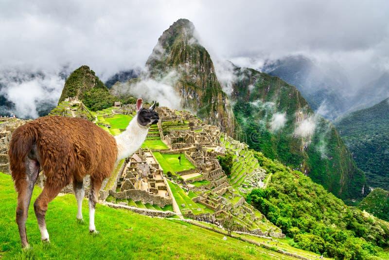 马丘比丘,库斯科-秘鲁 库存图片