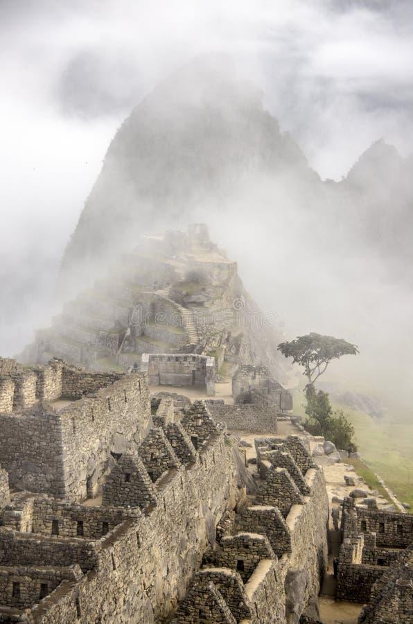 马丘比丘,清早,秘鲁 免版税库存图片