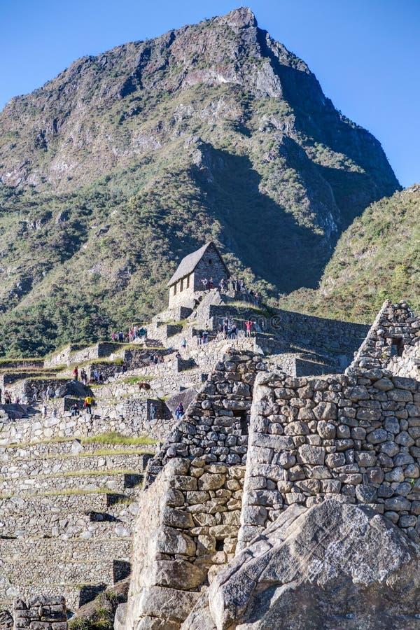 马丘比丘,阿瓜斯卡连特斯火山/秘鲁-大约2015年6月:大阳台和蒙大拿马丘比丘峰顶在秘鲁 图库摄影