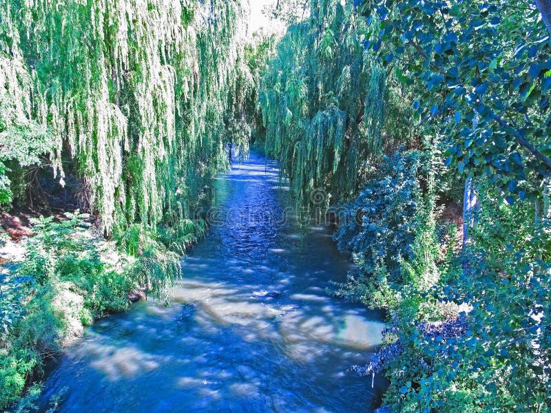 马乌莱河,它穿过塔尔卡市,智利  库存照片