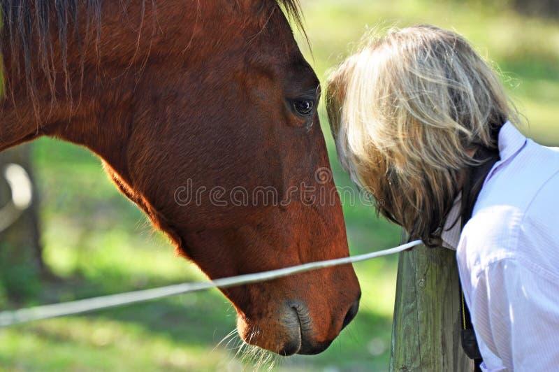 马低声说话者-软的梦想的画象妇女&宠物 库存图片
