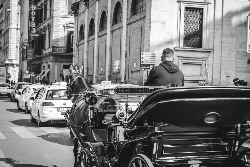 马和一个美丽的老支架在罗马 免版税图库摄影