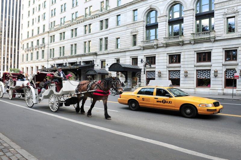 马和支架乘驾在中央公园 库存照片