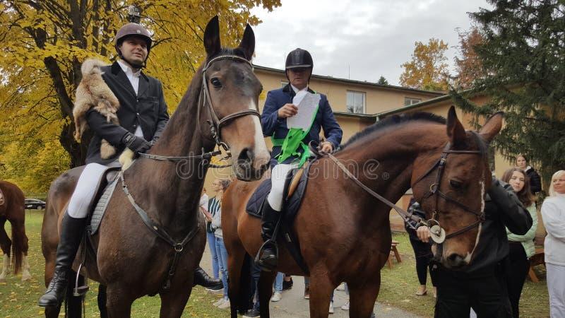马和车手在科希策大学斯洛伐克的 免版税库存照片